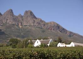 Cape Town Travel - Winelands